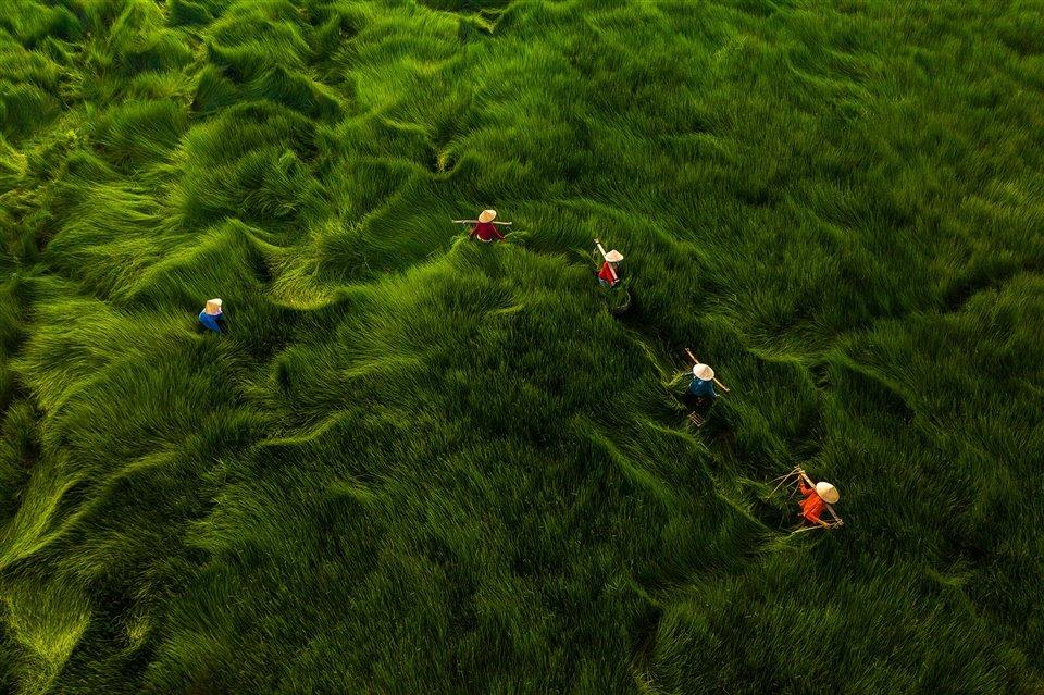 Mejores fotos aéreas_Revista Contrastes