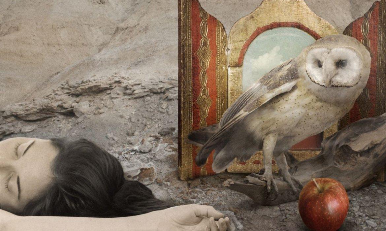 Un recorrido por el mundo visual de Julieta Anaut_Revista Contrastes